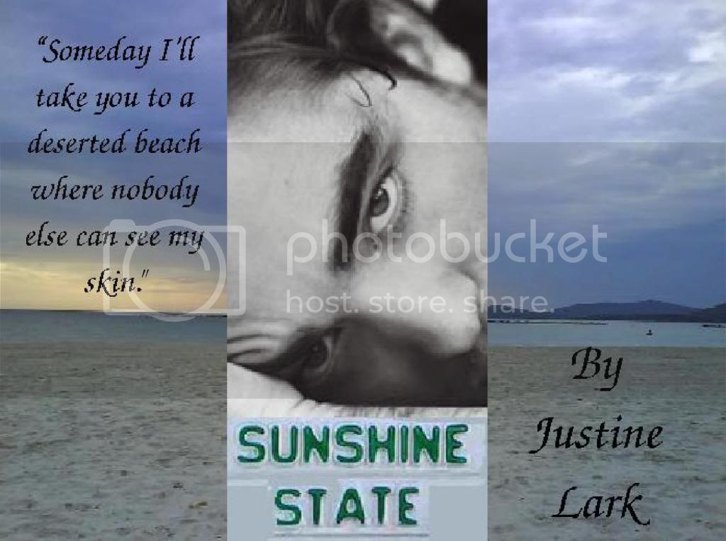 Sunshine State Banner